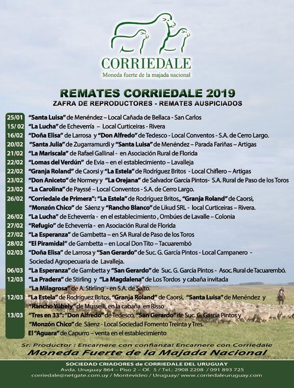 Remate Corriedale 2019